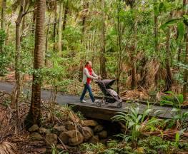 Palm Valley Currenbah walking track Trail Hiking Australia