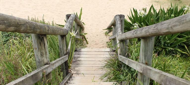 Pebbly Beach to Snake Bay walking track Trail Hiking Australia