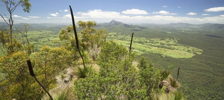 Pinnacle walk and lookout Trail Hiking Australia