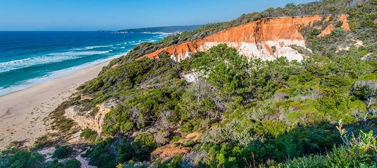 Pinnacles loop walking track Trail Hiking Australia
