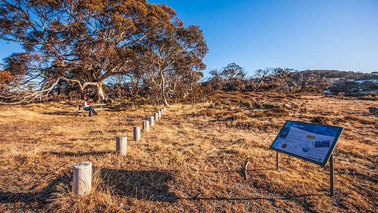 Rennix walking track Trail Hiking Australia