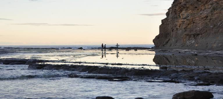 Rock Platform walk - Depot Beach Trail Hiking Australia