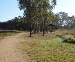 Rouse Hill Estate walk Trail Hiking Australia
