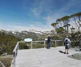 Snow Gums boardwalk Trail Hiking Australia