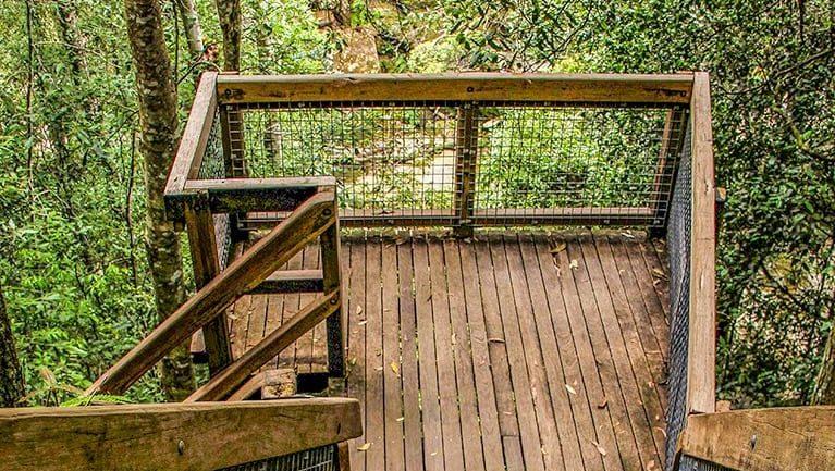 Somersby Falls walking track Trail Hiking Australia
