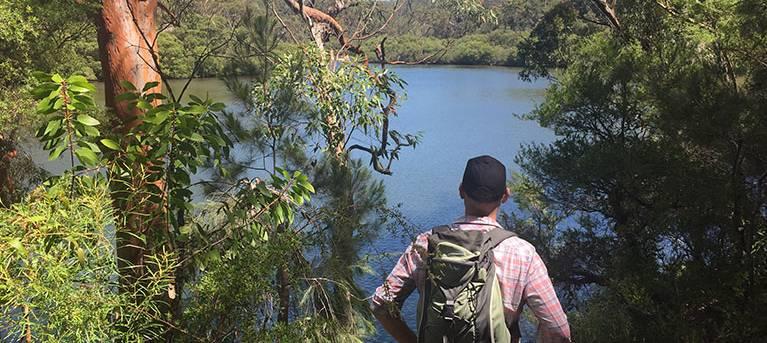 Sphinx Memorial to Bobbin Head loop track Trail Hiking Australia