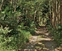 Tamboi walking track Trail Hiking Australia