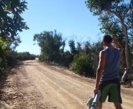 The Basin track and Mackerel track Trail Hiking Australia