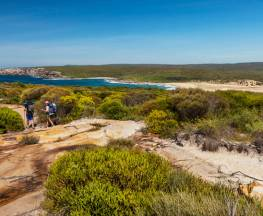 The Coast track Trail Hiking Australia