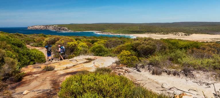 The Coast track Trail Hiking Australia