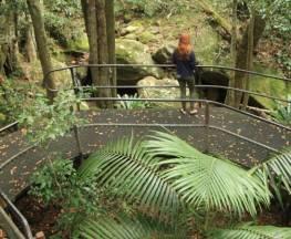 The Falls walk Trail Hiking Australia
