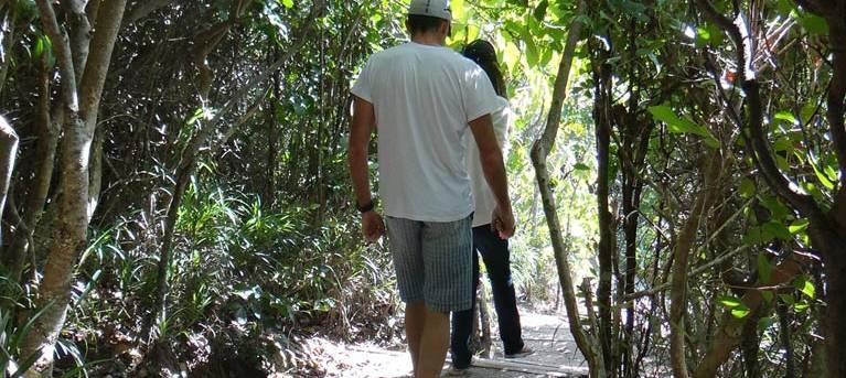 Three Sisters walking track (Broken Head) Trail Hiking Australia