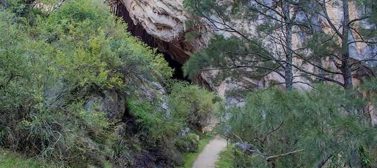 Victoria Arch walking track Trail Hiking Australia
