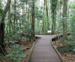 Victoria Park boardwalk Trail Hiking Australia