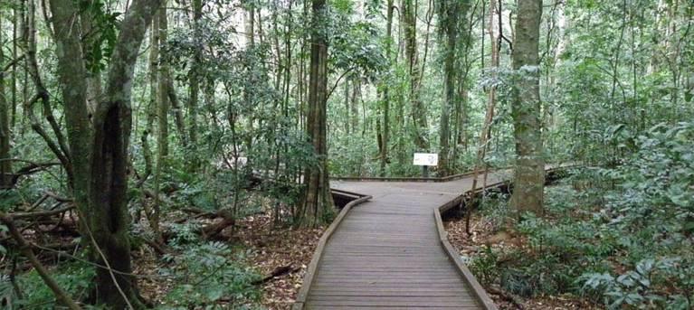 Victoria Park boardwalk Trail Hiking Australia