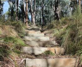 Wallaby walking track Trail Hiking Australia