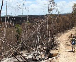 Wallaroo walking track Trail Hiking Australia