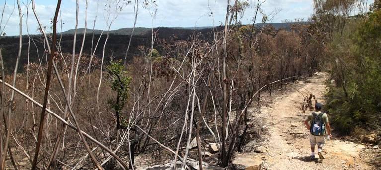 Wallaroo walking track Trail Hiking Australia