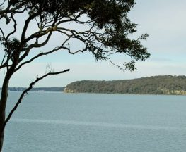 Wangi circuit walking track Trail Hiking Australia