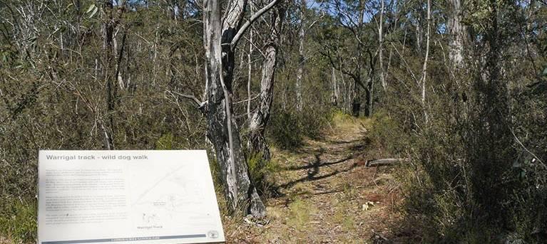 Warrigal walking track Trail Hiking Australia