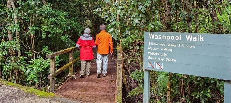 Washpool walking track Trail Hiking Australia