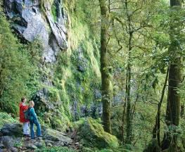 Weeping Rock walking track Trail Hiking Australia