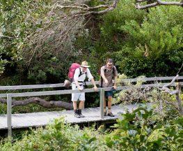 Wilsons Headland walking track Trail Hiking Australia