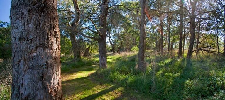 Wingecarribee River walking track Trail Hiking Australia