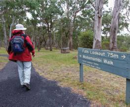 Wollomombi walking track Trail Hiking Australia