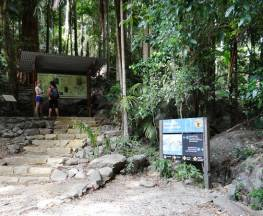 Wollumbin (Mount Warning) summit track Trail Hiking Australia