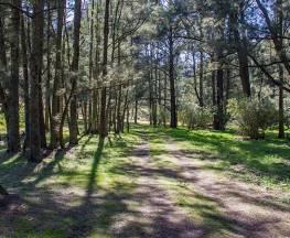 Wombeyan Waterfall walking track Trail Hiking Australia