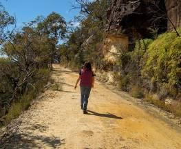 Womerah Range trail Trail Hiking Australia