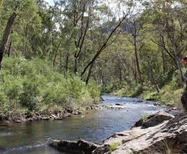 Yarrangobilly River walk Trail Hiking Australia