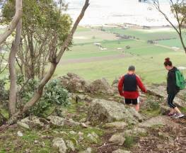 Yerong walking track Trail Hiking Australia