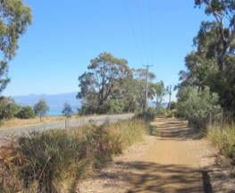 South Arm Peninsula Trail
