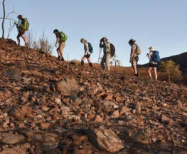 What to Look for in a Reputable Tour Operator Trail Hiking Australia