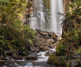 Cam Falls
