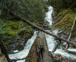 Willies Falls