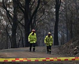 burnt mt tomah trail hiking australia