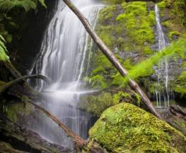 Mavista Falls