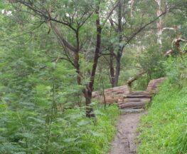 Plenty Gorge River Hike (21km)