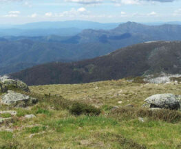 Mount Stirling Craigs Hut Loop