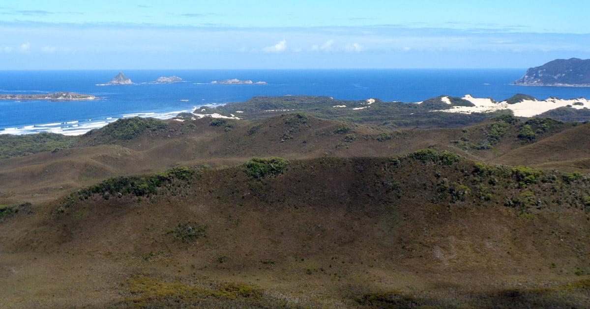 View back to Noyhener Beach (Murgab Creek)