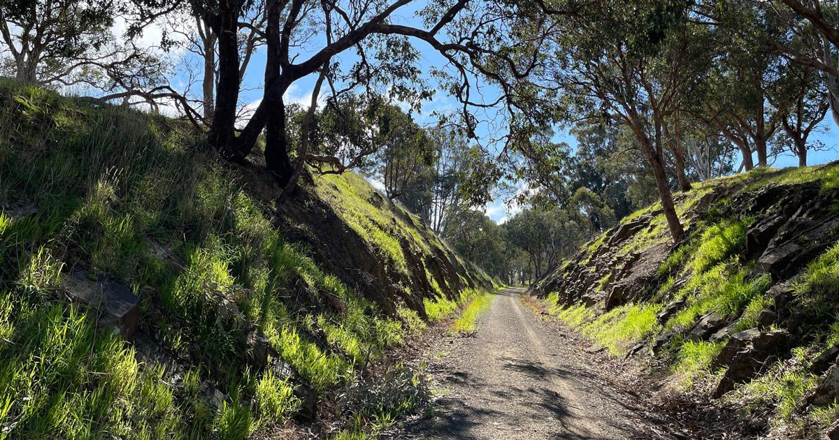 Yea to Cathkin Trail